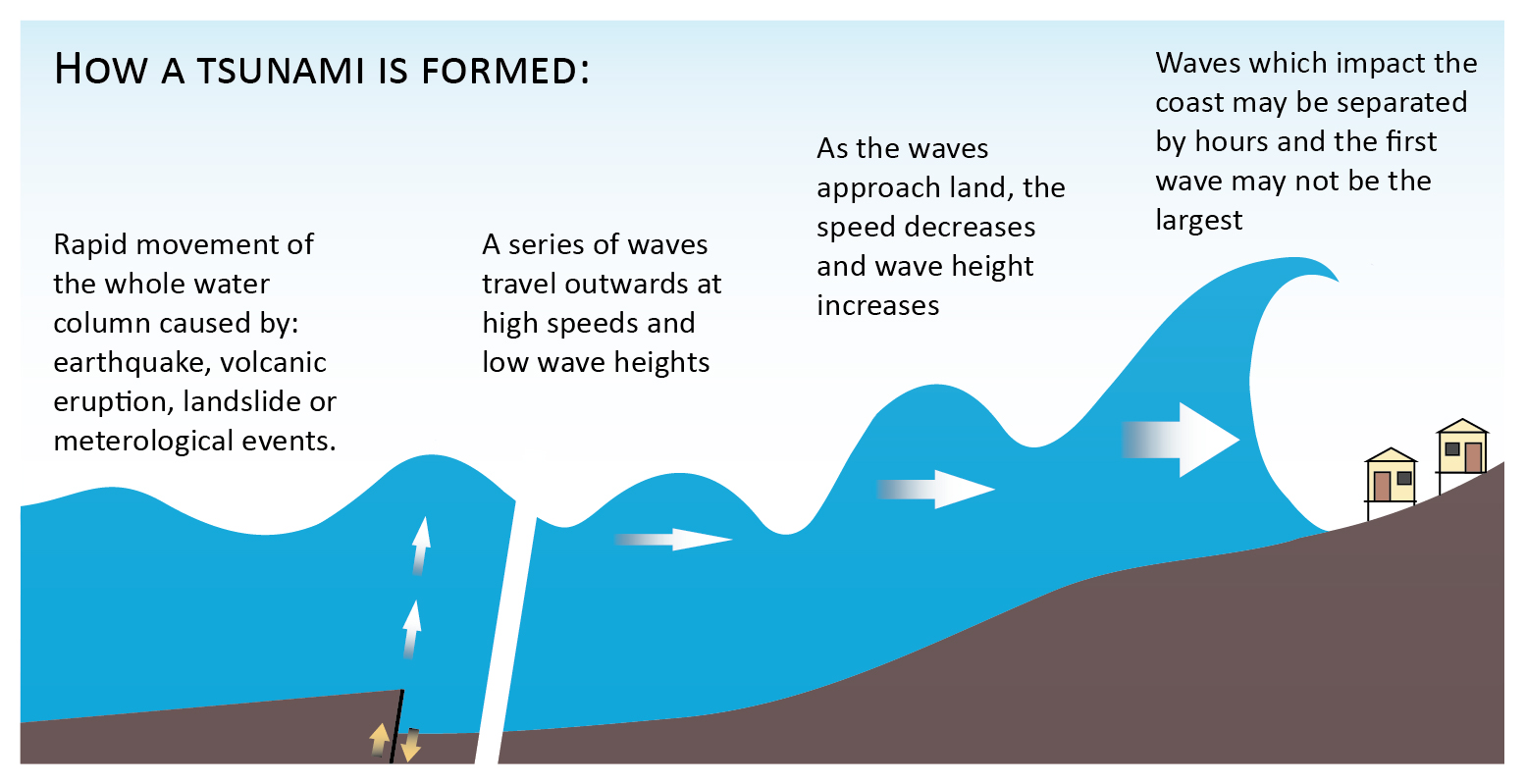 How is a tsunami formed? - mccnsulting.web.fc2.com